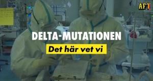 İsveç'te endişe veren delta varyantı hangi bölgede ne kadar görüldü?