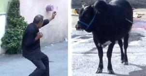 Kurbanlık ile karate yapan adam bu hareketleriyle fenomen oldu