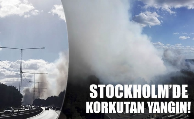 İsveç'te artan hava sıcaklığı ile birlikte orman yangınları korkutuyor.