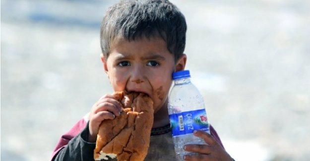 Avrupa'da 25 milyon çocuk açlık sınırında yaşıyor