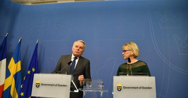 İsveç Dışişleri Bakanı Wallström: Herkesin kendisini özgürce ifade etmesinden yanayız
