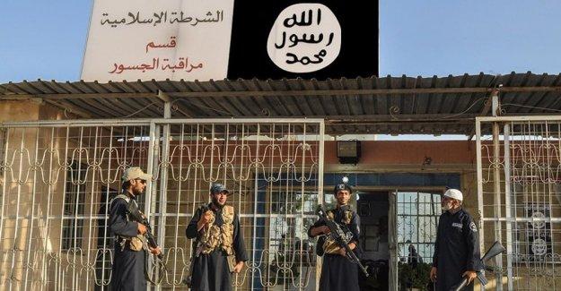 İsveç'e geri dönecek DAEŞ  militanları için 'pişmanlık teşvikleri...