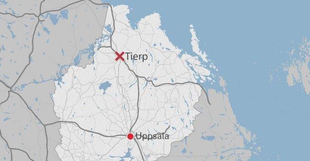 İsveç'te araç altında kalan 6 çocuk ezildi