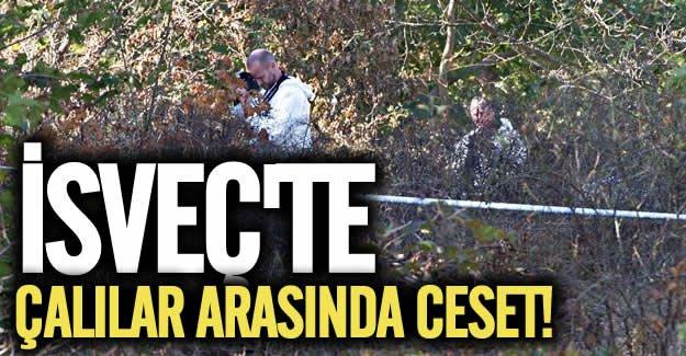 İsveç'te bir ceset daha bulundu