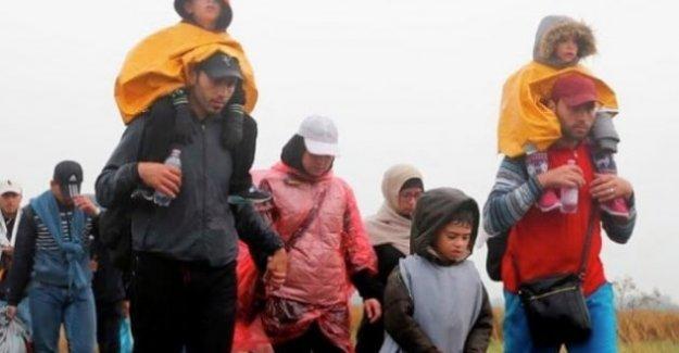 İsveç'te,'' Geçici Sığınmacı Yasası'' çıkarıldı