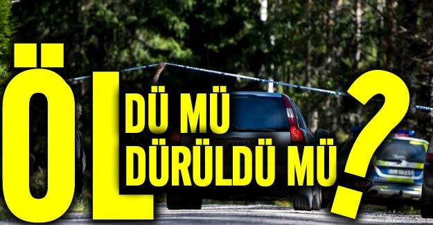 İsveç'te kamyonette ölü bulundu