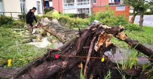 İsveç'te şiddetli fırtına hayatı...