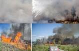 İsveç'te orman yangını kontrol edilemiyor