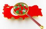 Türkiye'deki koronavirüsle ilgili son bilgiler açıklandı