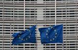 Avrupa Parlamenterleri iklim krizi için ülkelerden bağlayıcı taahhütler istiyor