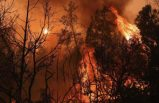 California yanıyor! 560 noktada tarihin en büyük yangını devam ediyor