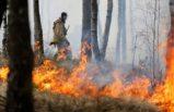 İsveç aşırı sıcaklara karşı uyardı