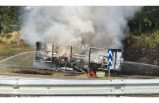 Seyir halindeki kamyon alev alınca, çıkan yangın korkuttu