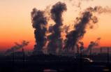 Aniden ölen 186 gencin beyninde hava kirliliği parçacıkları bulundu