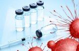 Havayolu şirketleri, Covid-19 aşılarını taşımak için seferber oldu