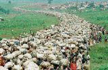 800 binden fazla insanın katledildiği soykırımın ayrıntıları belgelerle ortaya çıkıyor