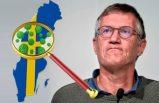 İsveç'te Covid-19 nedeniyle 268 kişi daha yaşamını yitirdi