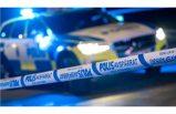 Solna'da hırsızlar ev sahibini hastanelik etti