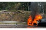 E18 karayolunda seyir halindeki otomobil alev aldı