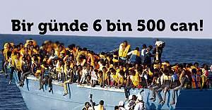 Bir günde 6 bin 500 can