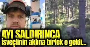 İsveçli adam ayı saldırısından böyle kurtuldu
