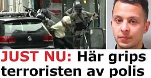 O terörist dev operasyonda vurularak yakalandı