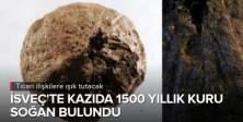 İsveç'te bin 500 yıllık kuru soğan bulundu