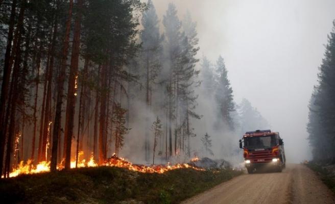 İsveç'te son 24 saatte 80 yerde orman yangını