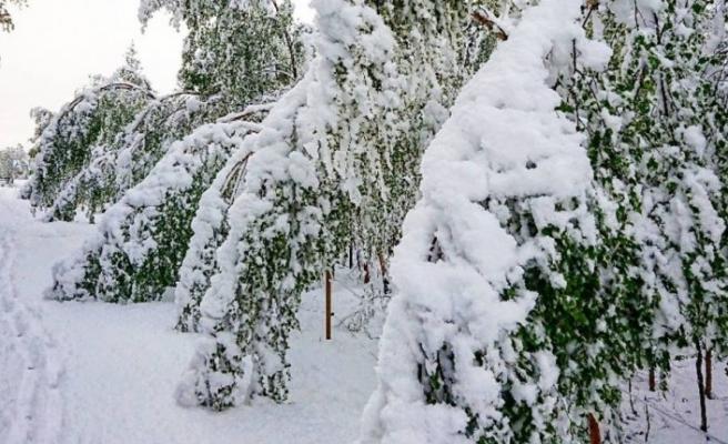 İsveç'te Mayıs ayında kar sürprizi