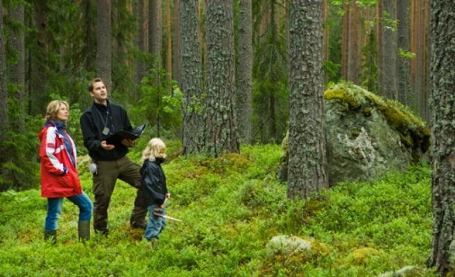 Avrupa'da en çok ormanı olan ülke