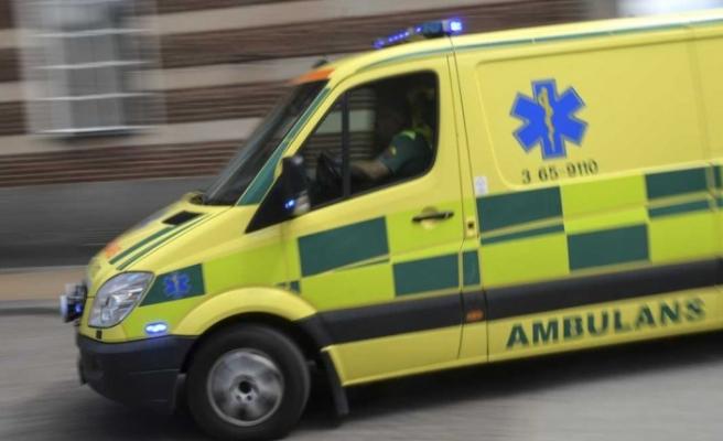 İsveç'te köpeğin saldırdığı kadın hastanelik oldu