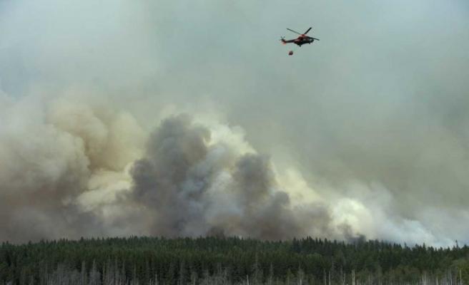 İsveç'te orman yangınına neden olan şirkete 2,5 milyon SEK ceza