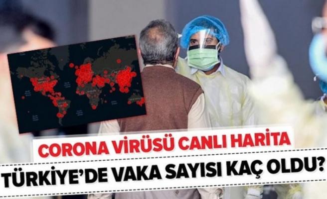 Türkiye'de vaka ve ölüm sayıları endişe veriyor