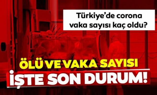 Türkiye'deki son vaka sayıları açıklandı