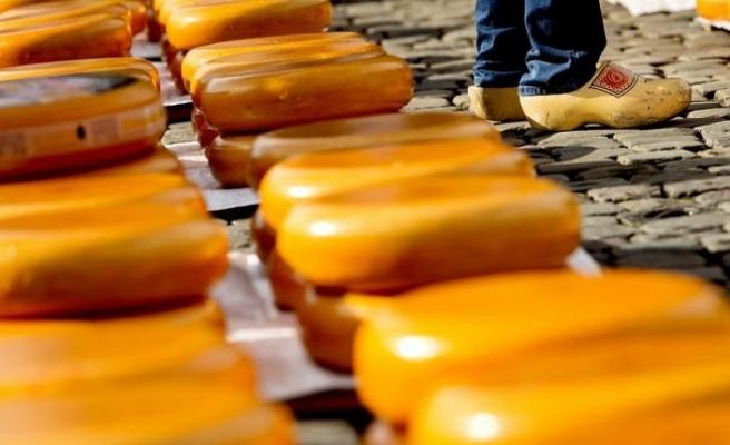Peynirden zehirlenen 10 kişi hayatını kaybetti, üretici hakkında soruşturma başlatıldı