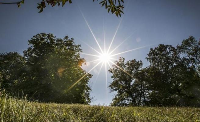Göteborg'da 100 yılın en sıcak Kasım ayı