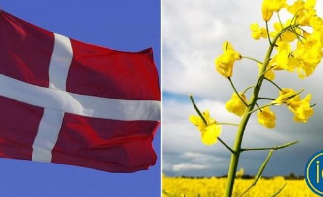 Danimarka, Kopenhag'ı büyütmek için resmen İsveç'ten toprak istedi