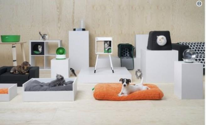 IKEA 'müşteri portföyüne' evcil hayvanları da ekledi