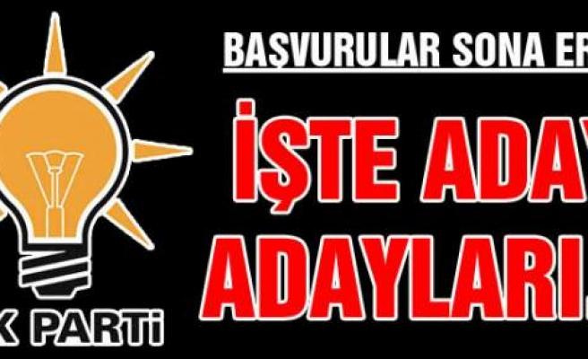 İşte Konya'nın Kulu İlçesi'nden AK Parti  Milletvekili Aday Adayları