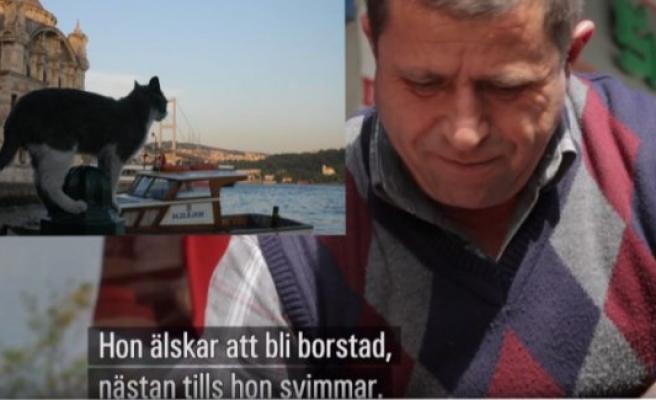 İsveç devlet televizyonu SVT'de İsveççe alt yazılı Türkçe belgesel