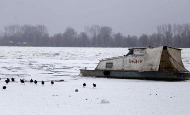 İsveç'te donan nehirdeki geyik kurtarıldı