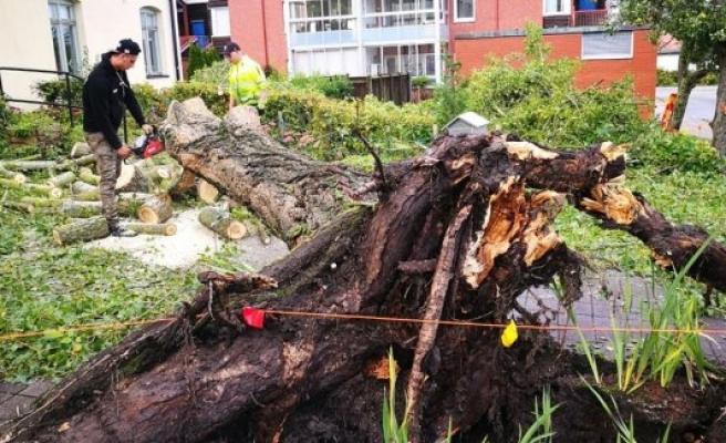 İsveç'te şiddetli fırtına hayatı olumsuz etkiliyor