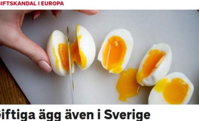 İsveç'te zehirli yumurta alarmı