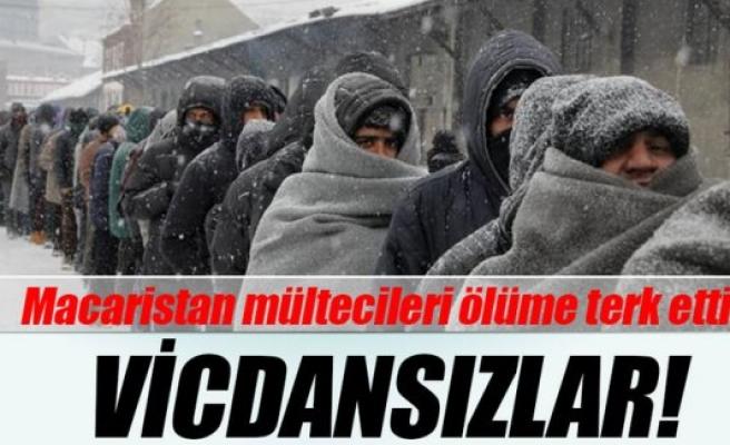 Macaristan mültecileri ölüme terk etti