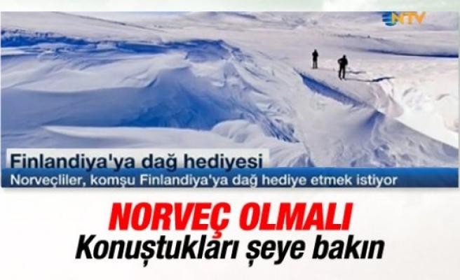 Norveç, Finlandiya'ya dağ hediye etmek istiyor