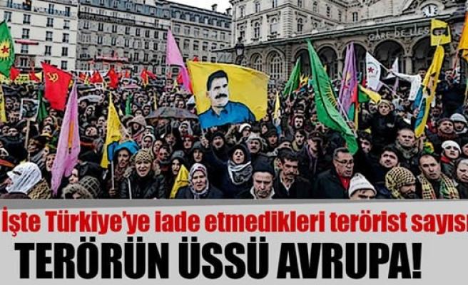 Türkiye'den kaçan teröristlerin sığınağı: Avrupa Birliği