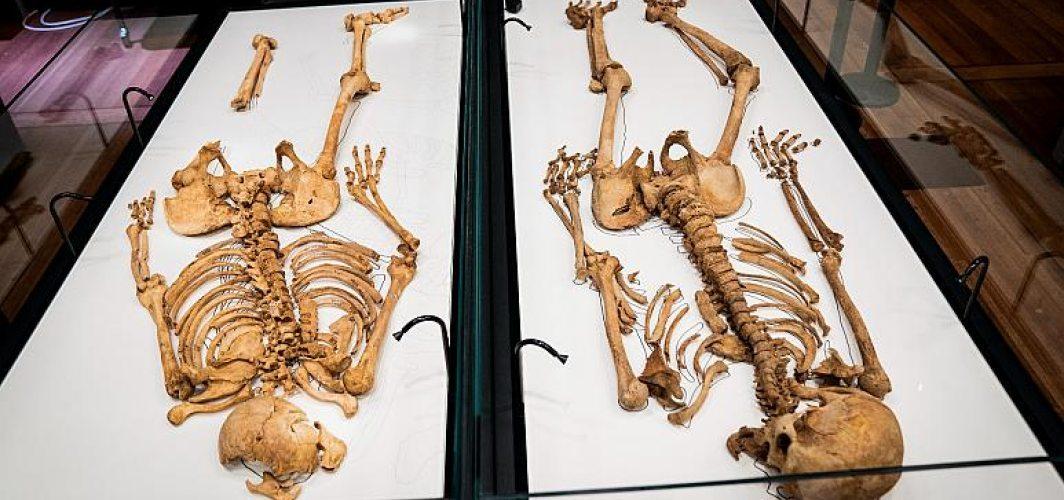 Akraba oldukları ortaya çıkan iki Viking savaşçısı bin yıllık ayrılığın ardından yeniden bir arada