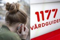 İsveç'te korona virüsüyle ilgili çağrılar arttı