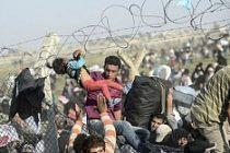Avrupa'ya ulaşan sığınmacı sayısı yarım milyonu geçti