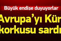 Avrupa'nın 'Kürt' korkusu!